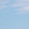 4-h pic sale air planes 263