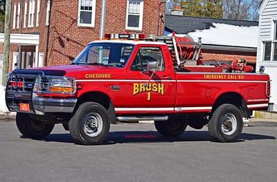 Cheshire Brush 1