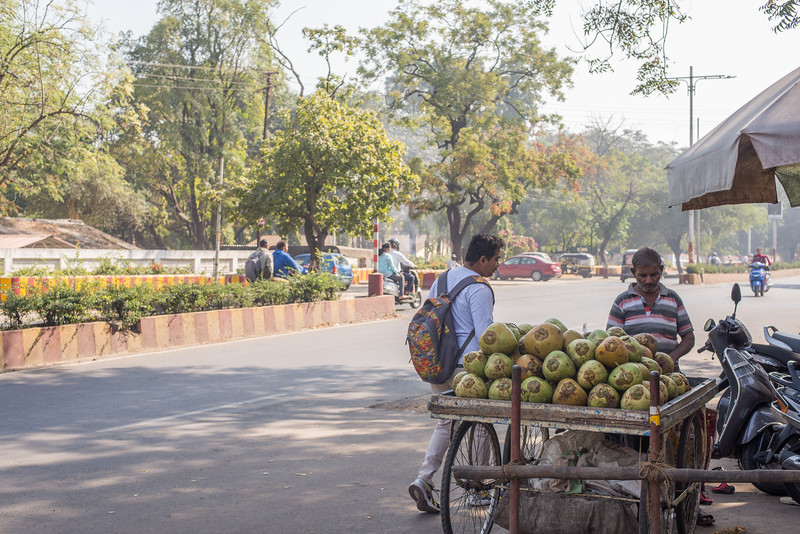 Coconut vendor outside the Hari Krishna temple.