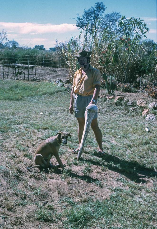 Roger Pepworth at Sesheke, with dog Heinz and elephant thigh bone