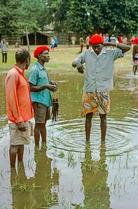 Zambian scenes