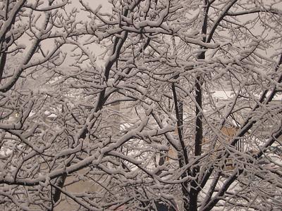 Snijeg u Miramarskoj 16. veljače 2005.