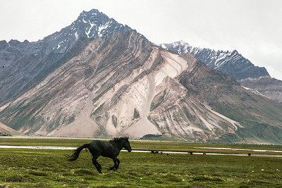 Rangdum is midway on the 250km route from Kargil to Padum, headquarter of the remote Zanskar valley. A convenient halt on this long route, it is a tiny hamlet of ten houses and a couple of food stalls and guesthouses. Its geographic location makes it, essentially, the definition of