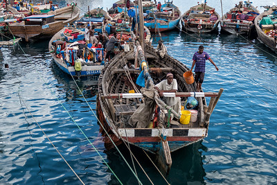 Fishermen unload their catch at the port in Stone Town