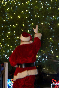 IMG_05602012 Park Circle tree lighting