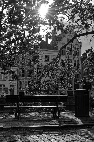 Canalside bench, Sint-Annarei, Bruges (b/w)