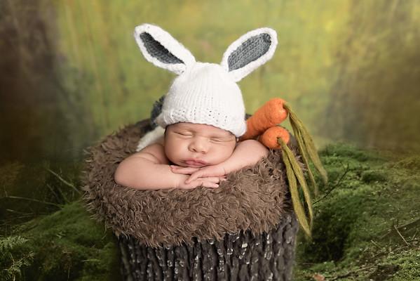 Zeke •Newborn