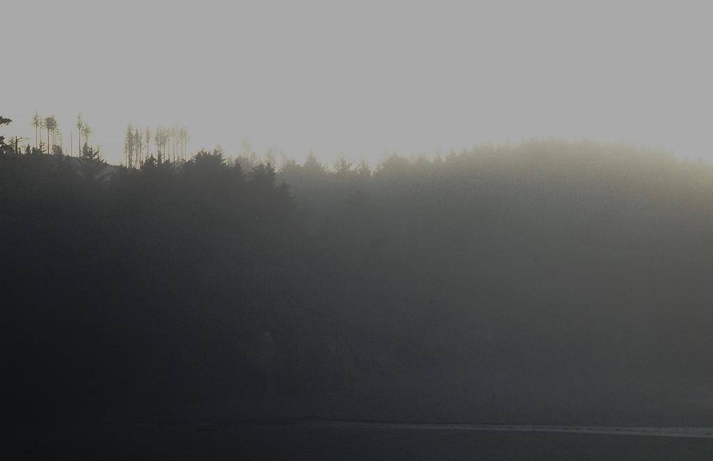 Gleneden Beach, Oregon  [November]