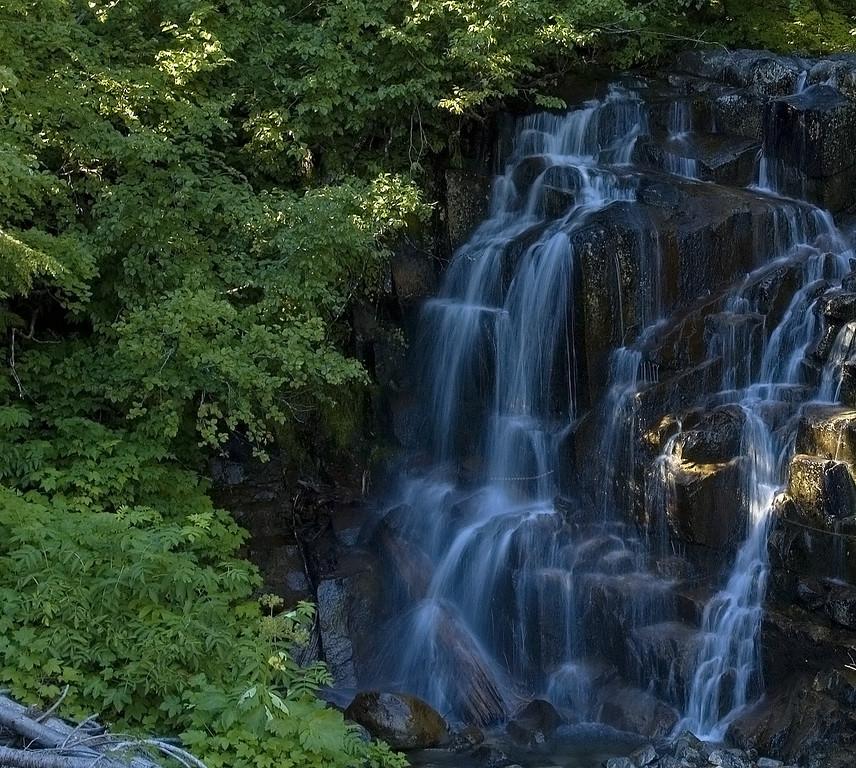 Mount Rainer, Washington  [June]