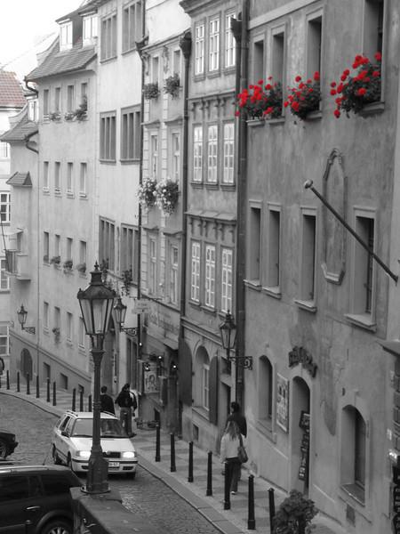 B & W street with red flowers