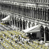 Yellow chairs in St. Marks square