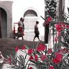 B & W Red flowers with women