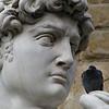 David statue with bird