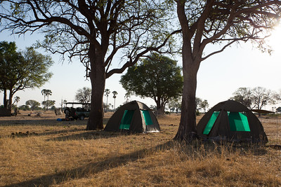 Fly camp on Hwange Walking Safari