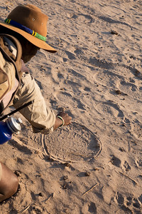 Elephant tracks, Hwange