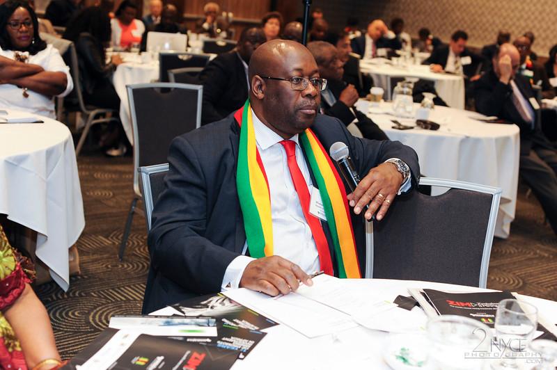 Hon. Winston Chitando, Zimbabwe's Minster of Mines & Mining Development responds to a question