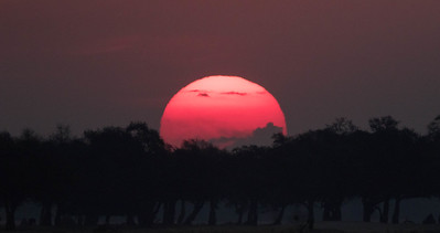 Sunset, Mana Pools National Park