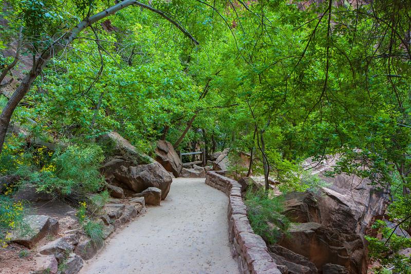 """""""Riverside Walk #1, Zion Canyon"""""""