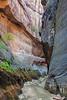 """Orderville Canyon Narrows"""