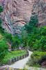 """""""Riverside Walk #2, Zion Canyon"""""""