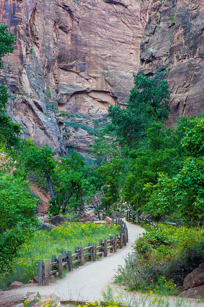 """Riverside Walk #2, Zion Canyon"""