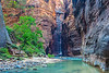 """""""Virgin River in Zion Canyon"""""""