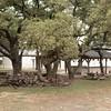 2012-12-19 Zion-84