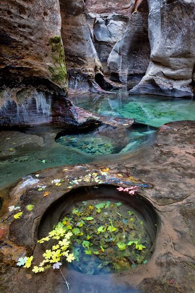 Subway Green Pools and Slot Canyon
