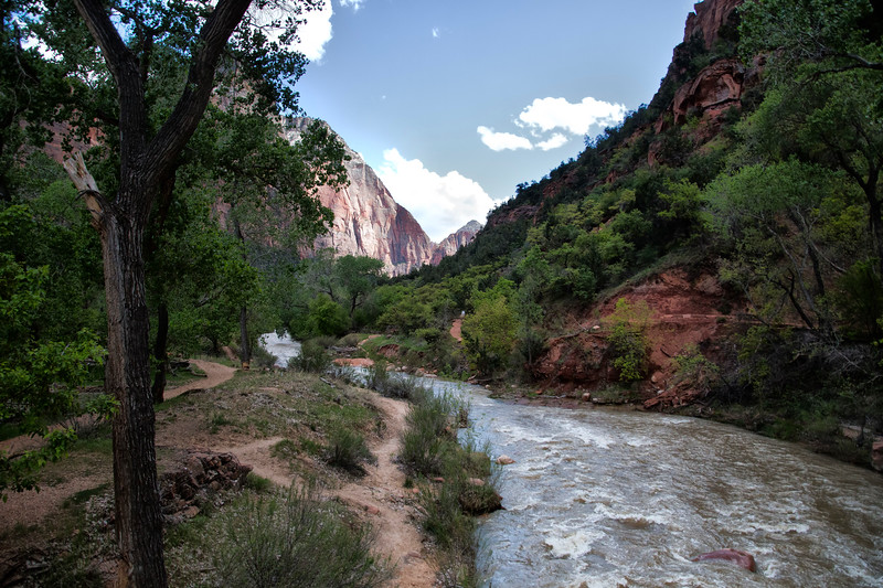 Vergin River,  Zion National Park, Utah