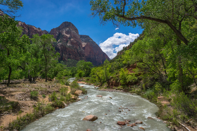 Virgin River at the Emerald Pools Trail
