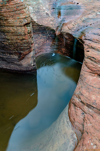 Water hole, Zion