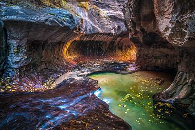 Zion National Park Autumn Colors & Winter Snow Fine Art Photography 45EPIC Dr. Elliot McGucken Fine Art Landscape and Nature Photography: Sony A7RII