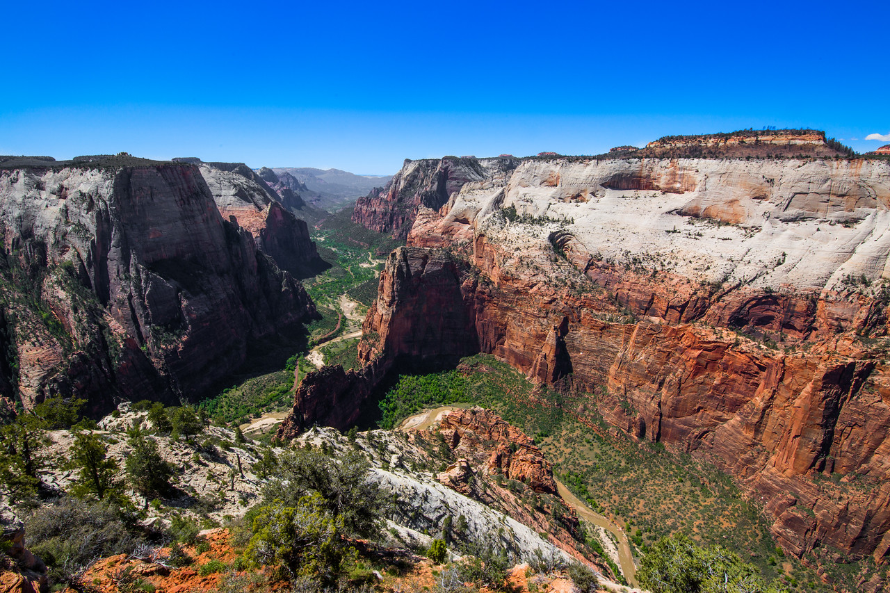 Zion National Park hikes