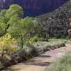 Virgin River from bridge at start of Angel's Landing trail