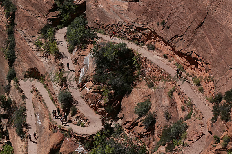 Lower part of the trail to Angel's Landing