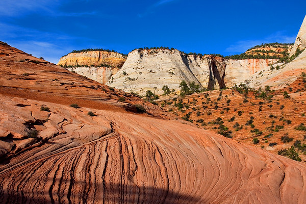 Weathered sandstone formed by incessant ancient desert winds form the geologic heart of Zion National Park.