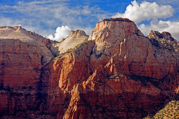 Majestic sandstone cliffs rise sharply above Pine Creek Canyon in Zion National Park.