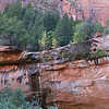 Below Emerald Pool