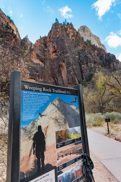 You walk by Weeping Rock on your way to Observation Point  ... so I thought I'd take a short side trip.