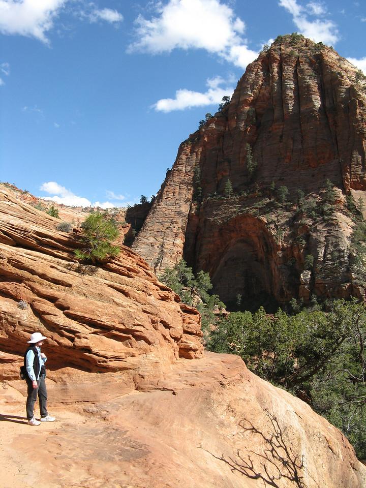 2011-04-21 Canyon Overlook 039