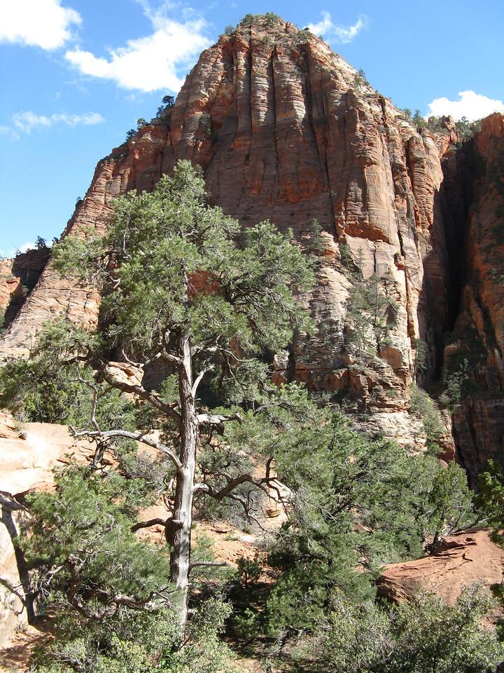 2011-04-21 Canyon Overlook 040