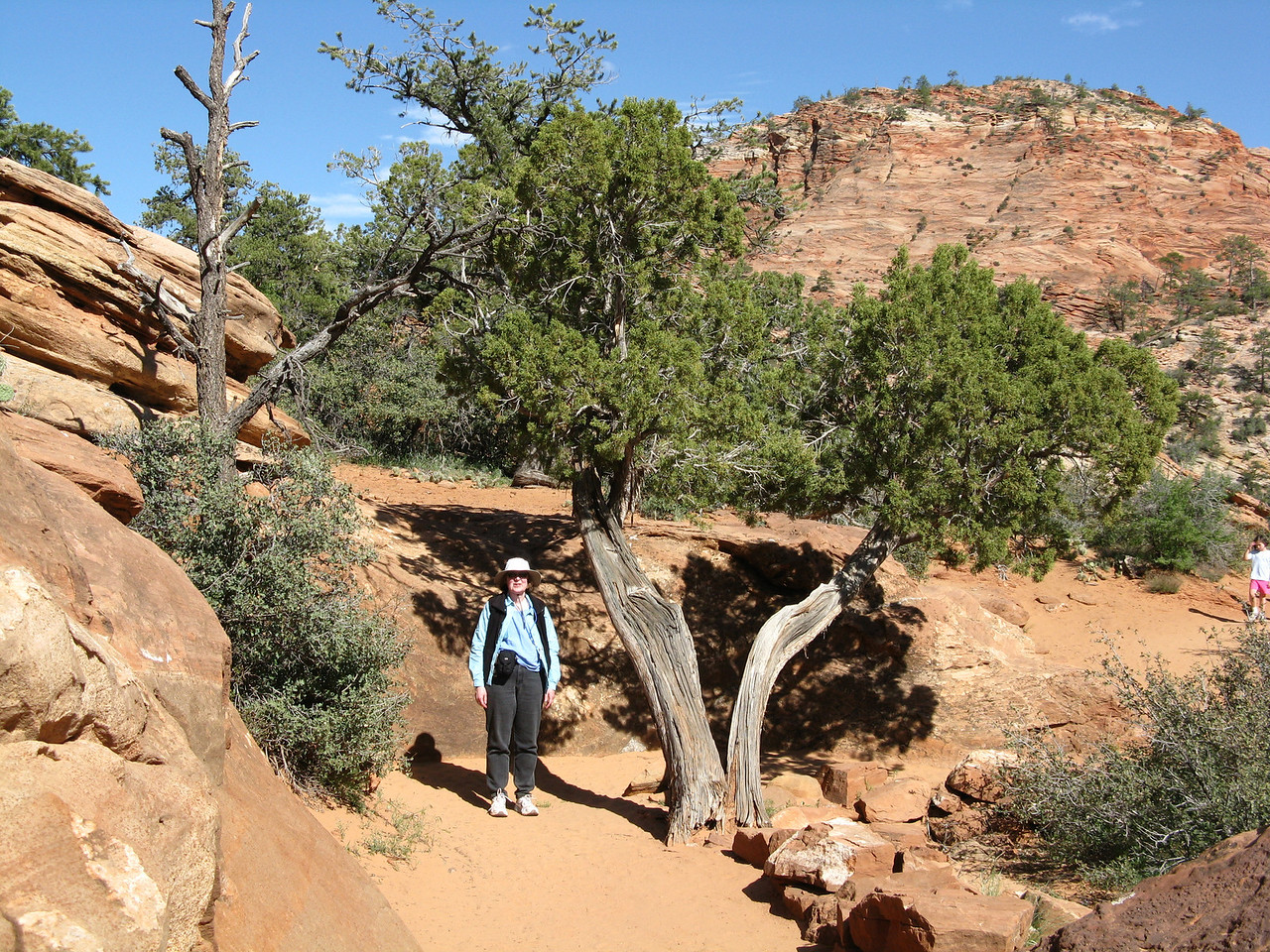 2011-04-21 Canyon Overlook 045
