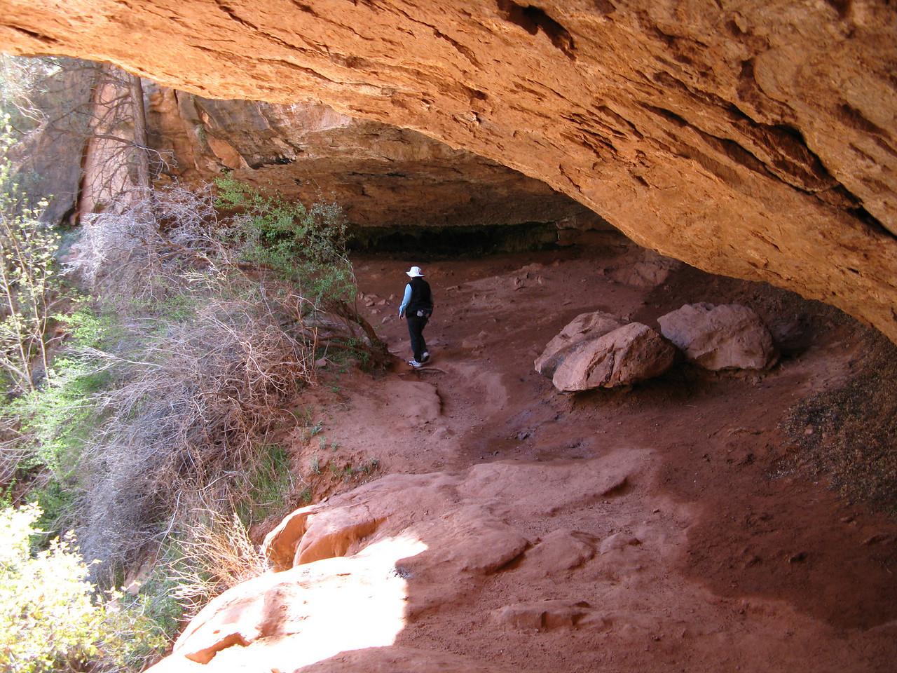 2011-04-21 Canyon Overlook 014