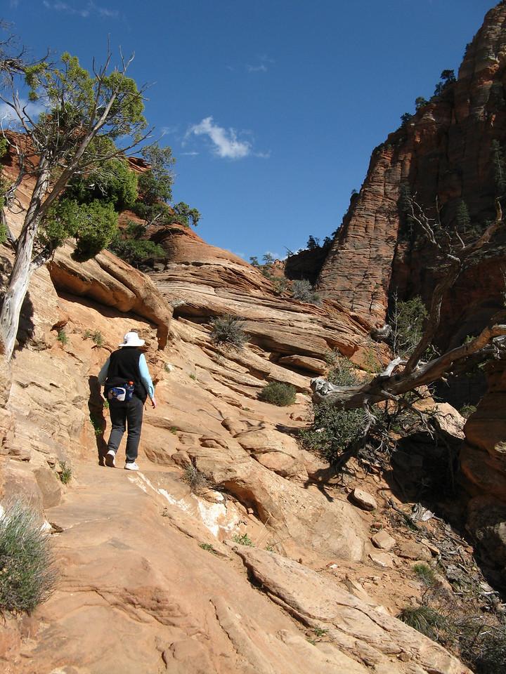 2011-04-21 Canyon Overlook 043