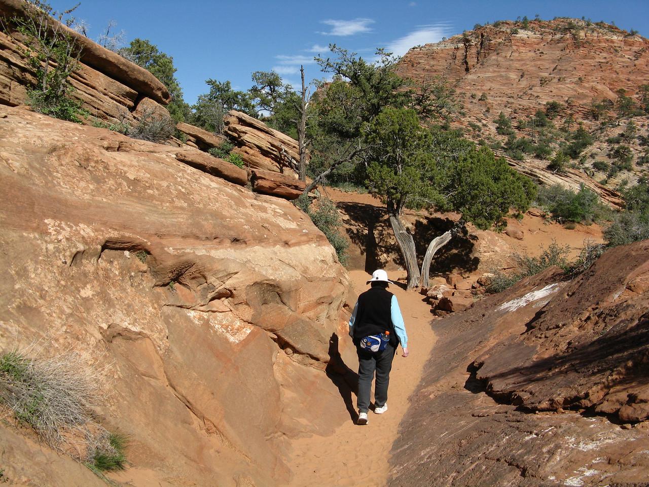 2011-04-21 Canyon Overlook 044