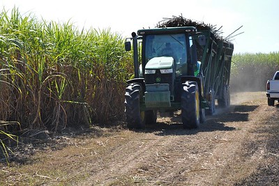 During his tour of Louisiana, American Farm Bureau President Zippy Duvall experience the full process getting sugar from the field to the kitchen. Here, the harvested cane is bring transported to the sugar mill.