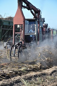 During his tour of Louisiana, American Farm Bureau President Zippy Duvall experience the full process getting sugar from the field to the kitchen. The burned sugarcane stalked are now being scooped up and loaded to be brought to the sugar mill.