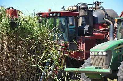 American Farm Bureau President Zippy Duvall rides in a cane harvester, to experience the sweetness of cane harvest firsthand.
