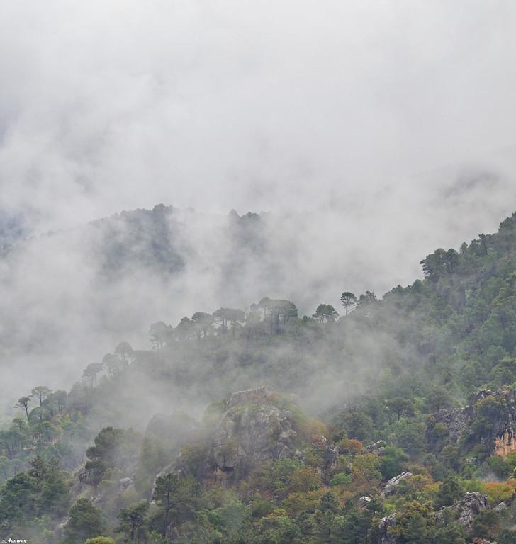 Sierra de Cazorla Region