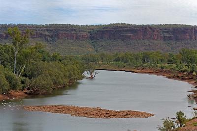 Cockatoos ; Victoria River